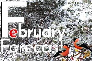 Numerology Forecast Predictions for February 2021