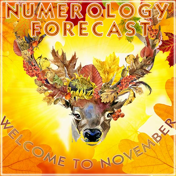 Numerology Forecast for Sun Number 6 for November 2019